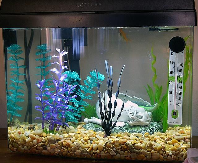 как разукрасить аквариум