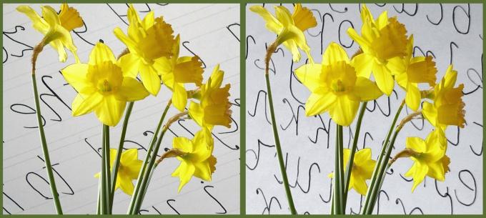 Как изменить фон фотографии в фотошопе