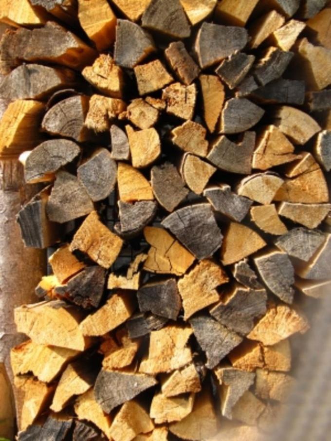 Сухие дрова идеально подойдут для растопки угля