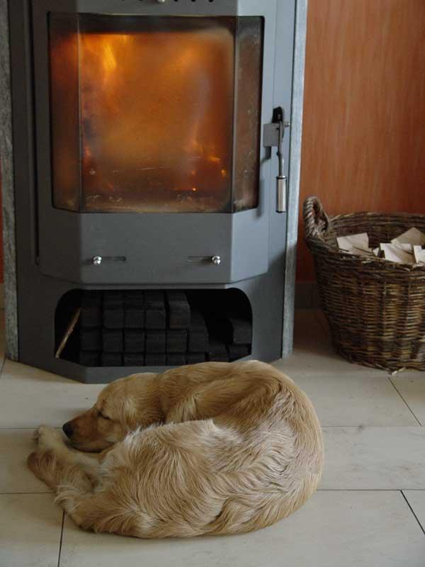 Печь, растопленная углем долго хранит тепло