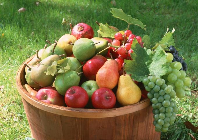 Хороший урожай можно вырастить только на сбалансированных почвах