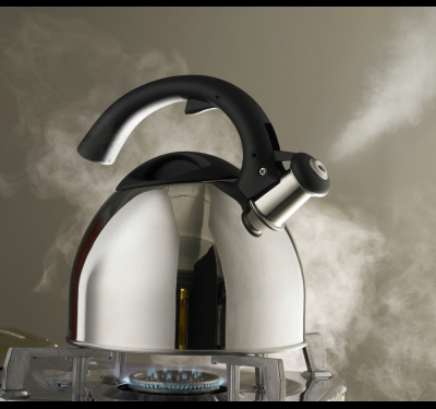 Как очистить замшу от соли