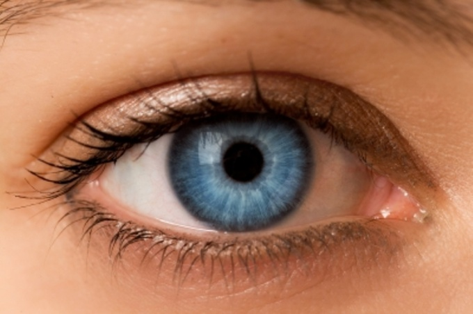 Eye – on are very sensitive to the adverse effects of