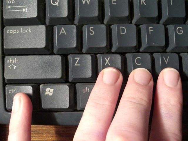 Выделите курсором или комбинацией клавиш фрагмент информации, которую хотите скопировать