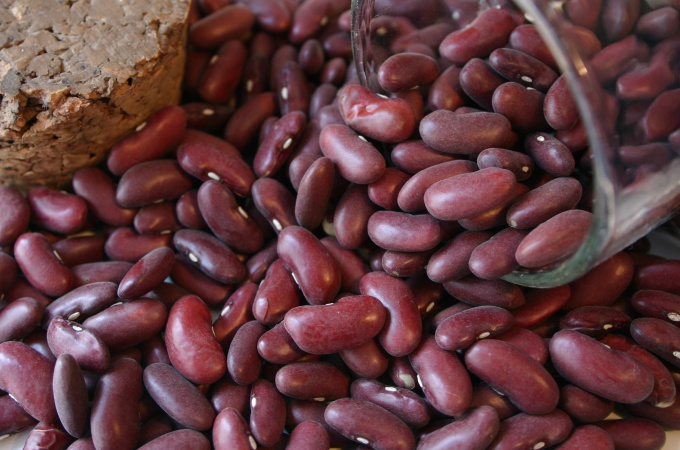 Red beans are rich in antioxidants