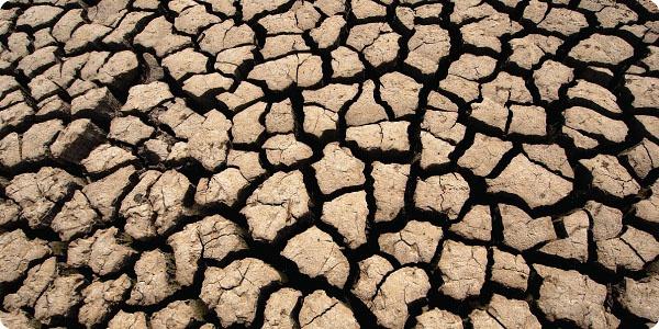 Эрозия почвы приводит к ее полному истощению