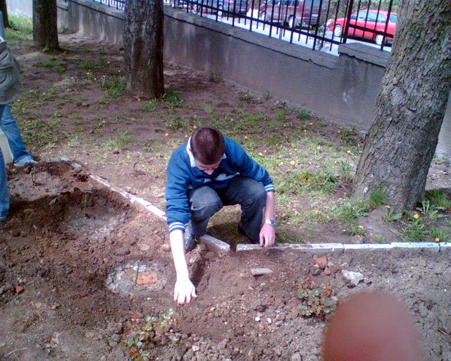 How to plant flowers