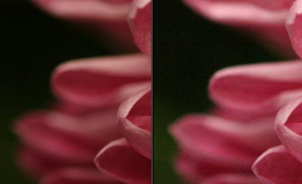 Пример фото со значением исо 100 и 3200.