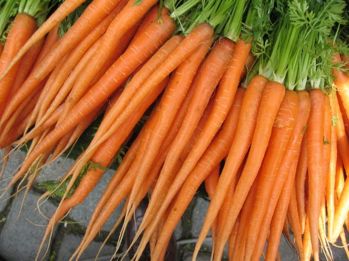 Морковь - красивый, вкусный  и полезный овощ