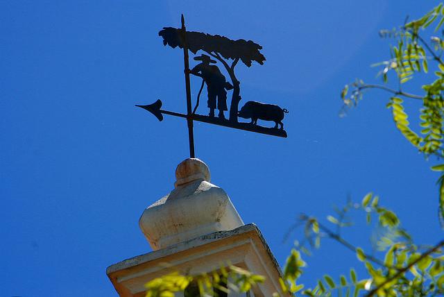 С флюгером на крыше вы всегда будете знать, куда дует ветер