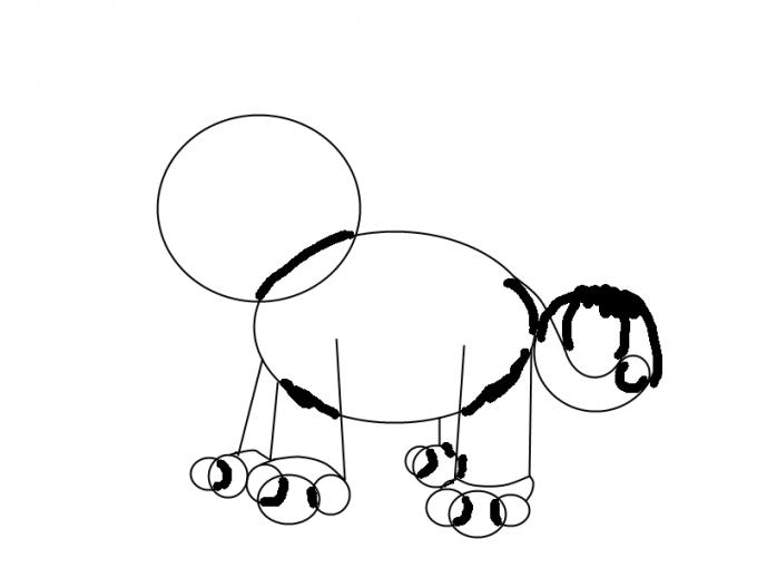 Как нарисовать <strong>тигра</strong> <b>карандашом</b>