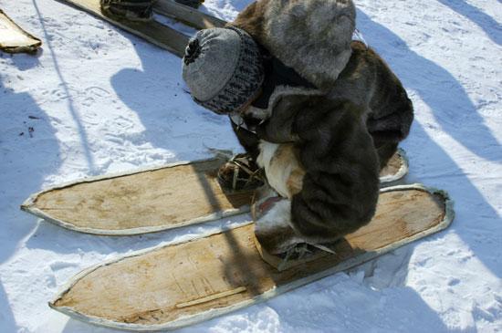Чем шире лыжи у охотника, тем легче ему идти по рыхлому снегу