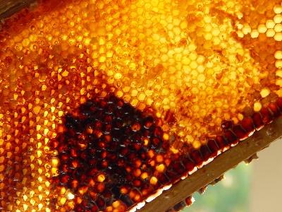 Как сделать мед