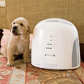 Некоторые модели способны полностью избавить ваш дом от запахов домашних питомцев