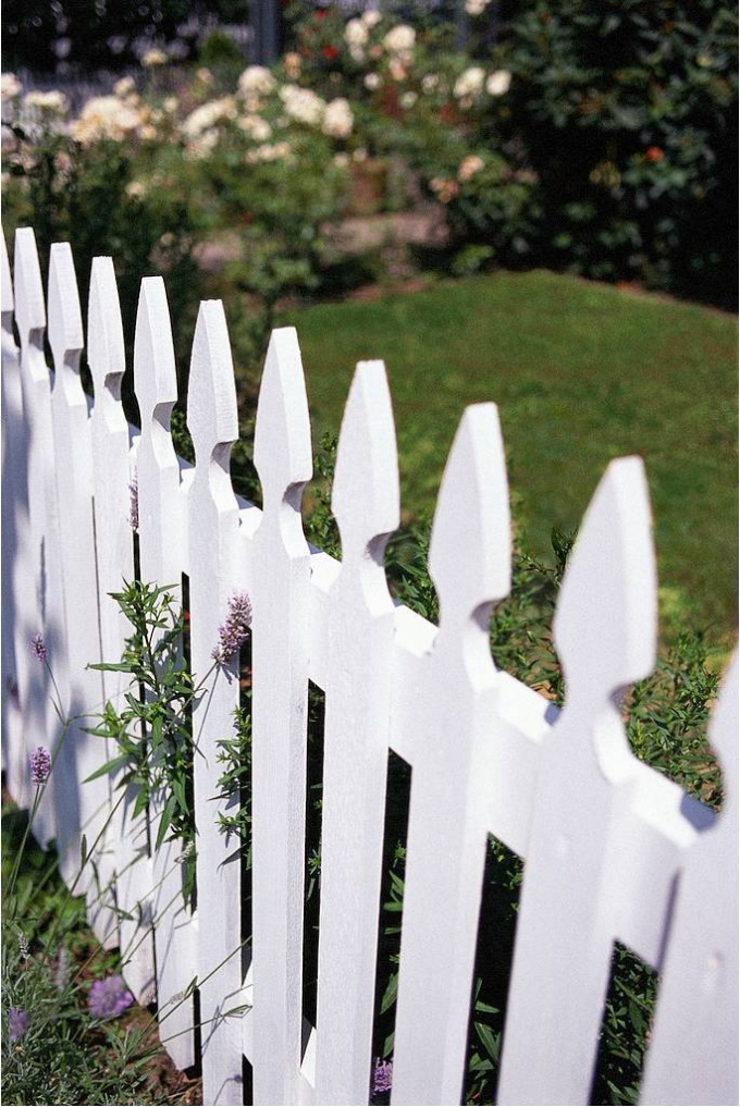 The usual fence will look on the site very cute