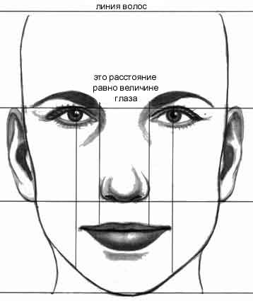 Лицо человека способно передать тысячи эмоций
