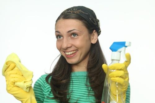 Каждая хозяйка хочет, чтобы ее дом был самым чистым