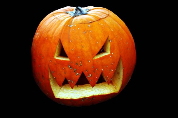 Не только в Хэллоуин!
