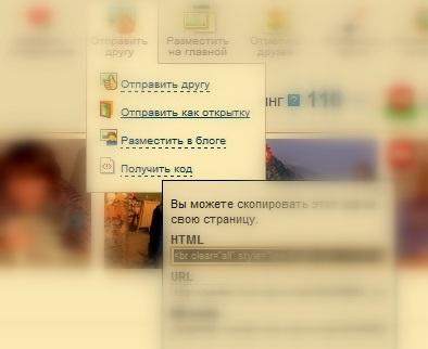 Добавить картинку в комментарий или блог можно с помощью кода