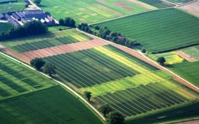 Главное в покупке земельного участка - это собрать необходимые документы