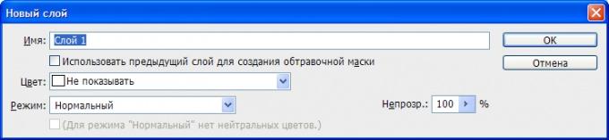 Окно параметров создаваемого слоя.