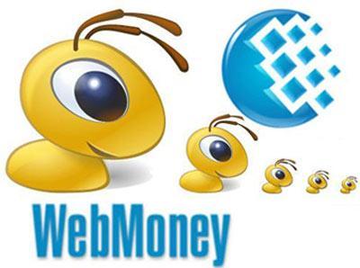 С помощью кошелька  WebMoney вы можете оплатить услуги и сервисы не выходя из дома