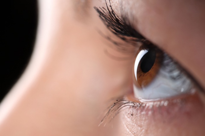 Обладательницы золотистых глаз всегда в центре внимания