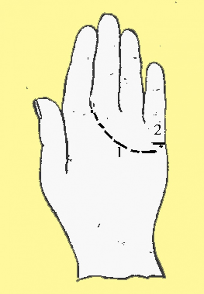 Рука с обозначенными на ней линиями сердца и любви