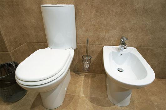 Замена унитаза изменит  облик туалета