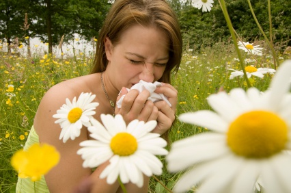 Allergy to pollen is one of the most common