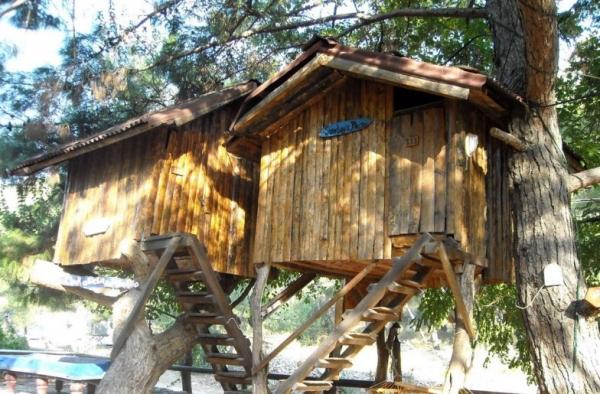 Как возвести домик на дереве