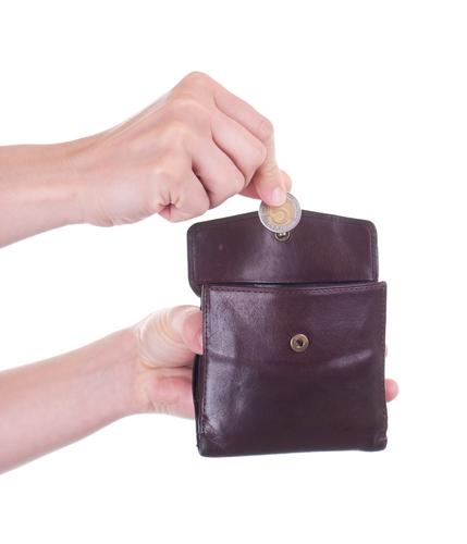 Как распределить доход