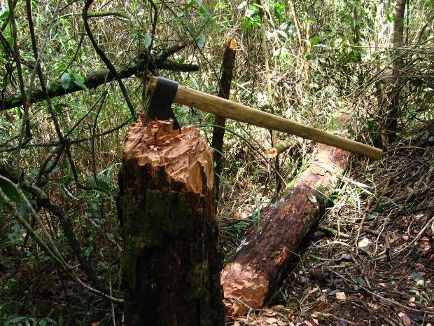 Как рубить дрова