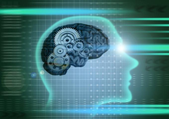 орган, ответственный за запись, хранение и воспроизведение информации, - головной мозг