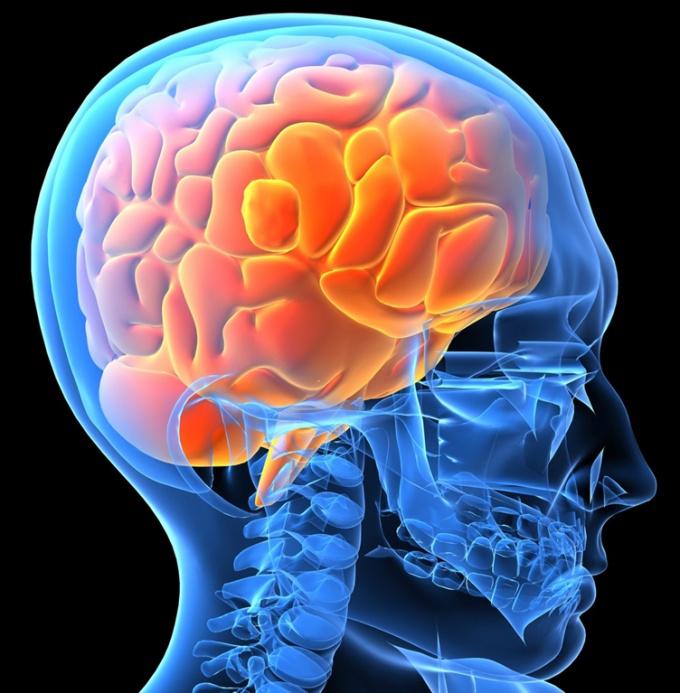 Как разогнать свой мозг