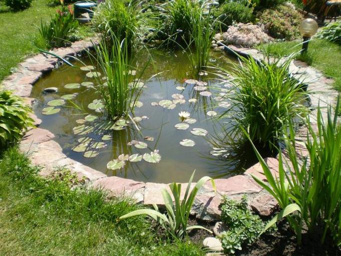 Вода создает в саду особую атмосферу.