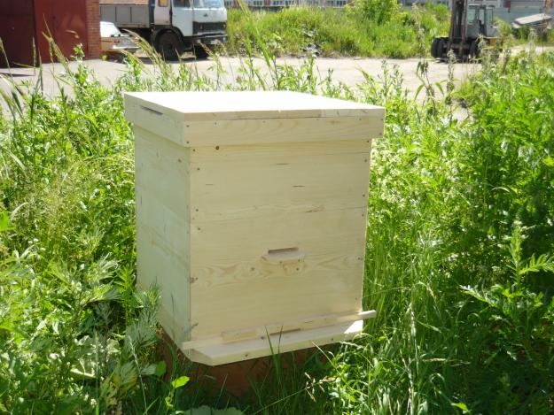 beehive for bees