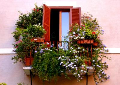 Цветущий балкон - это очень красиво!