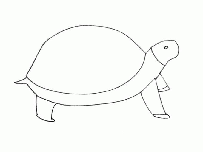 Как нарисовать <strong>черепашку</strong>