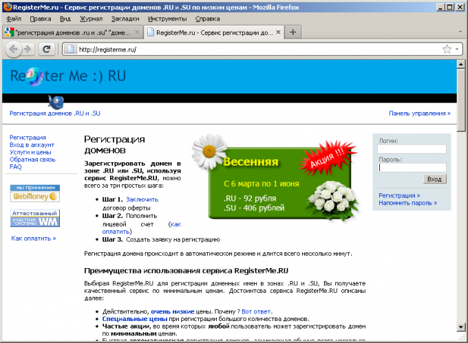 Типичный сайт сервиса регистрации доменов