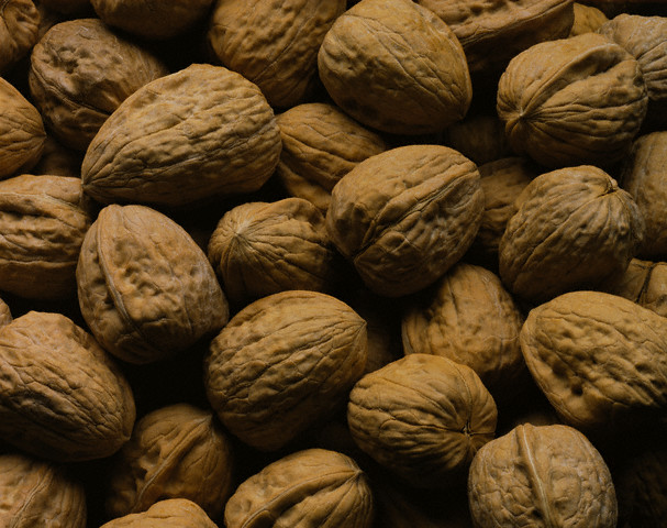 Купленные в магазине орехи прорастают очень плохо.