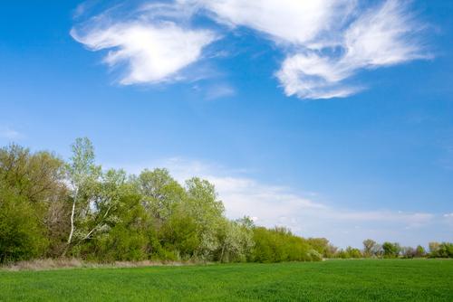 Как оформить землю в наследство