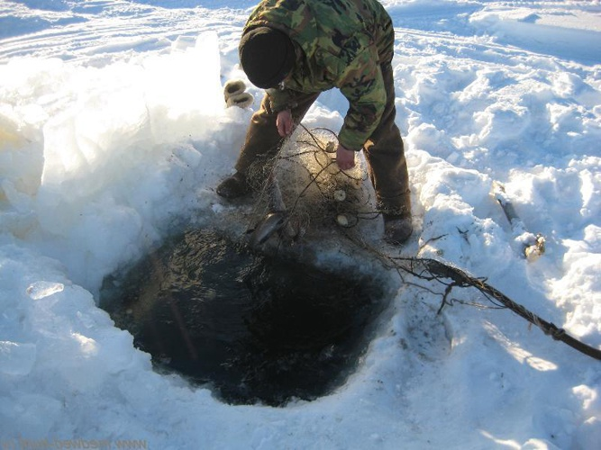 Как поставить сеть зимой