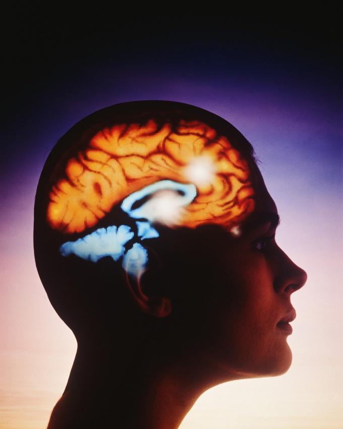 Как улучшить кровообращение к мозгу