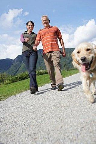 четвероногие питомцы - отличный способ поддержания хорошего настроения и физической формы