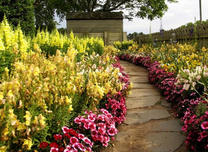 Как украсить сад цветами