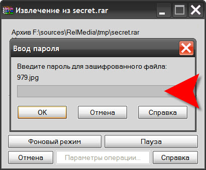 How to unzip an archive, protected <b>password</b>