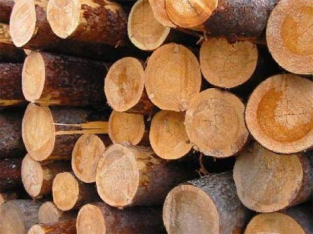 Как узнать, какие у <b>меня</b> <strong>дрова</strong>