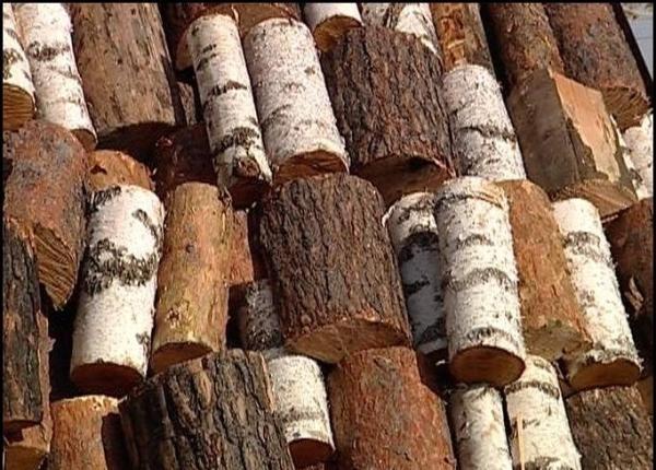 Как узнать, какие у меня дрова