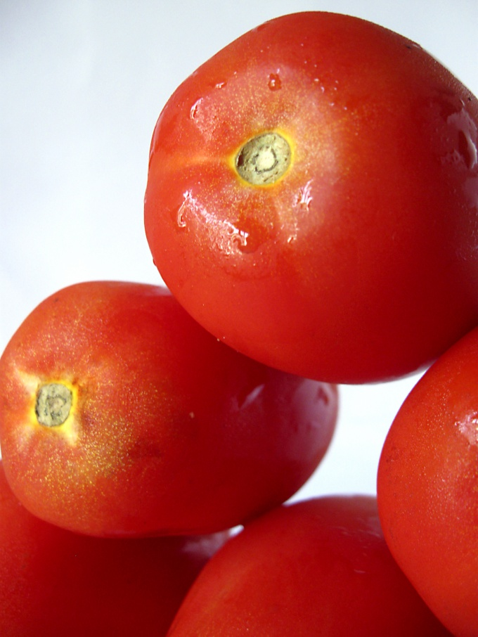 How to germinate tomato seeds